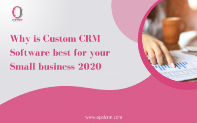 Why is Custom CRM Software best for your Small business 2020